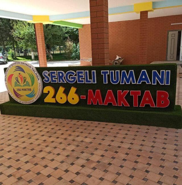 Школа №266